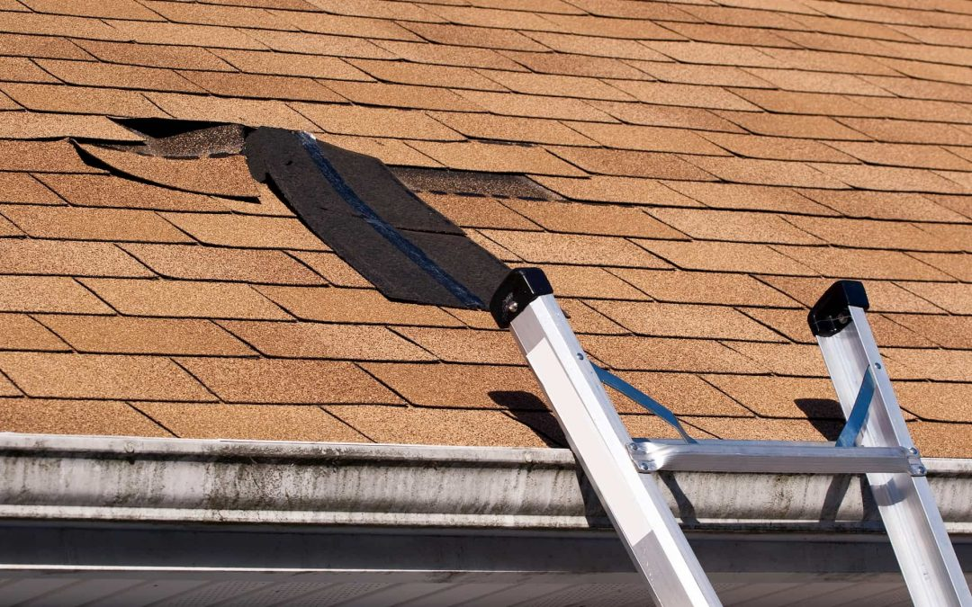 Best Ways to Minimize Storm Damage on Your Property